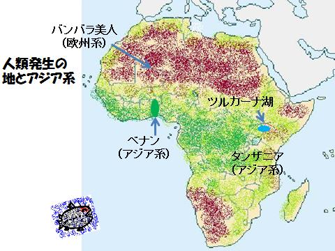 人類発生の地とアジア系