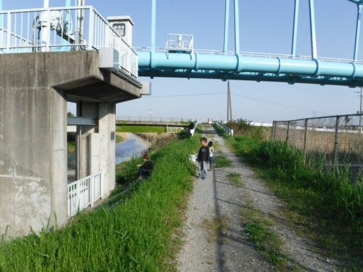 青毛堀川 (11)