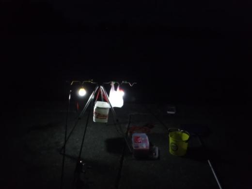 漁港でキャンプ (12)