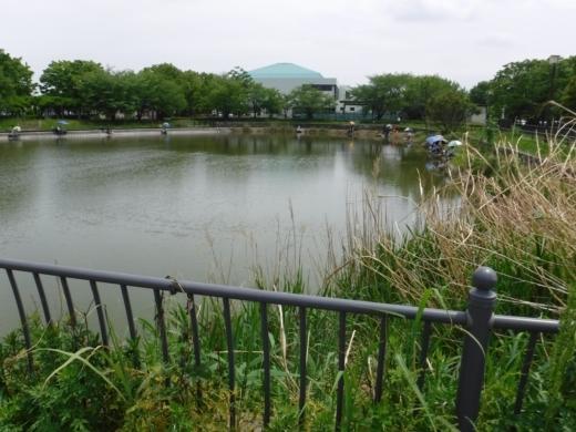 出羽公園 (3)