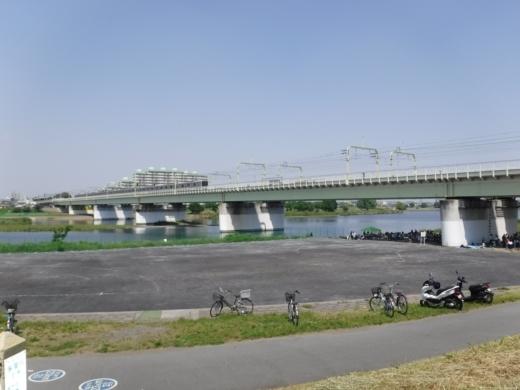 多摩川登戸釣り (7)
