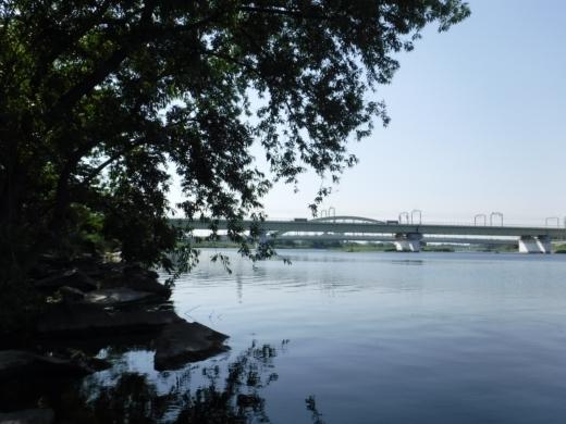 多摩川登戸釣り (18)