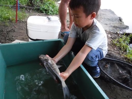多摩川登戸釣り (26)