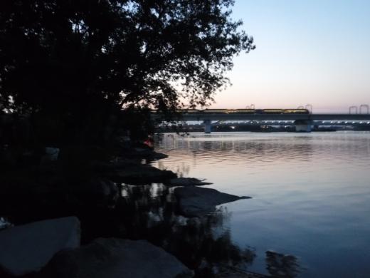 多摩川登戸釣り (28)