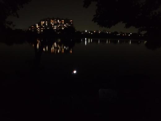 多摩川登戸釣り (33)
