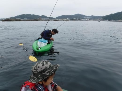 葉山の釣り (31)