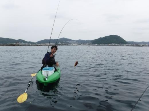 葉山の釣り (37)