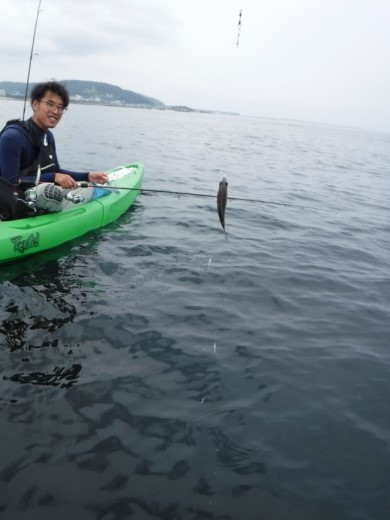 葉山の釣り (47)
