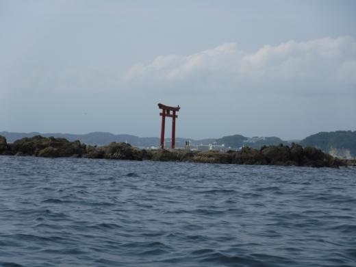 葉山の釣り (56)