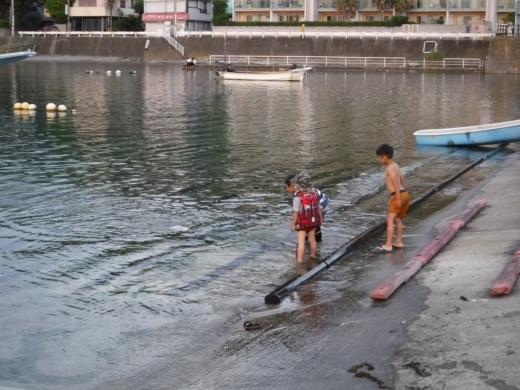 葉山の釣り (78)