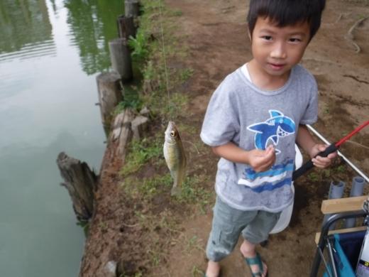 別所沼公園雑魚釣り (9)