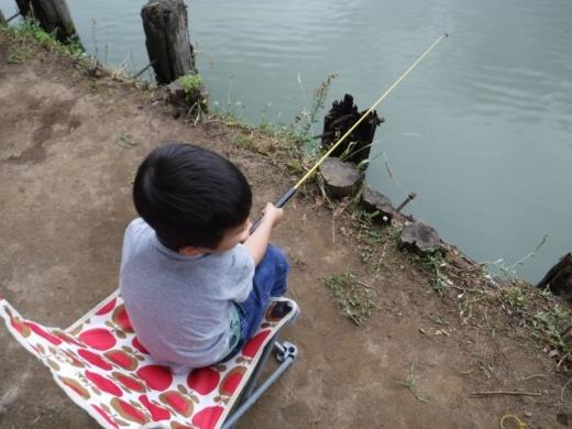 別所沼公園雑魚釣り (10)