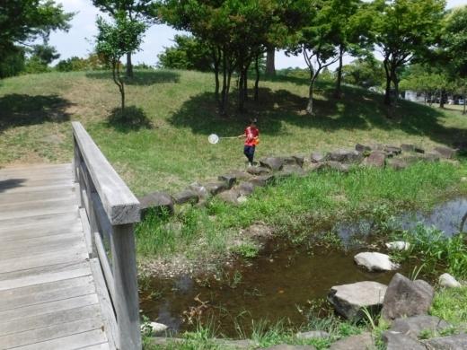 みさと公園 (11)