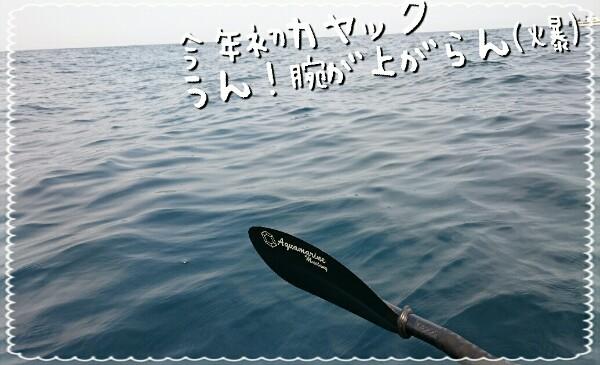 2017050214472587e.jpg
