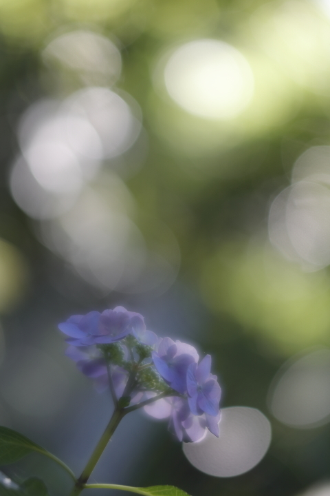 03_54_1070.jpg