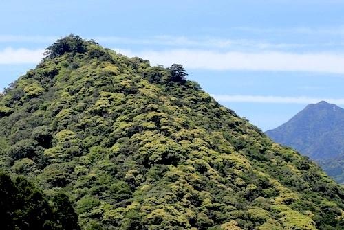 屋久島の山