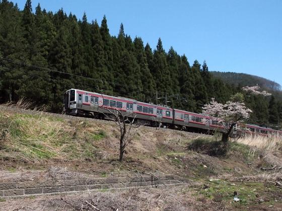 P4284532 (560x419)