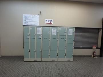 P4243033 (800x600)