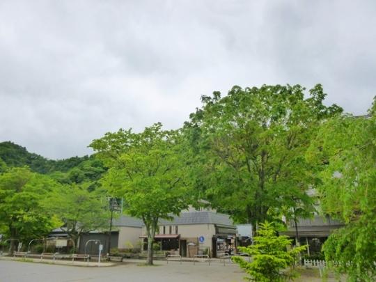 17_05_14-02miyagaseko.jpg