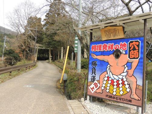 170603sumou02.jpg