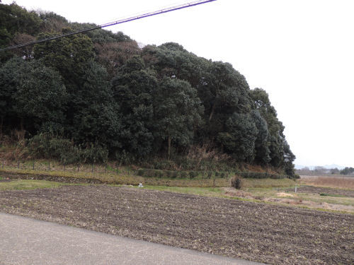 170609hashihaka43.jpg