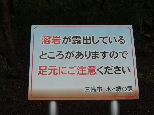 170708mishima10.jpg