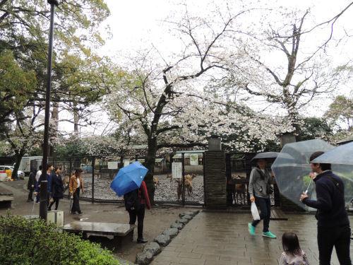 170709mishima105.jpg