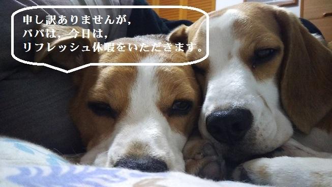 DSC_0013改