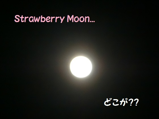 strawberry moon1