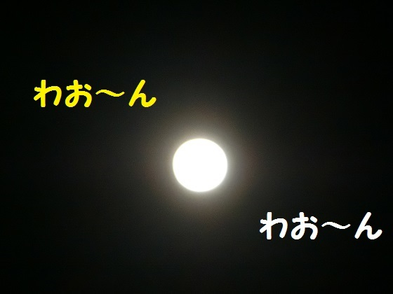 strawberry moon2