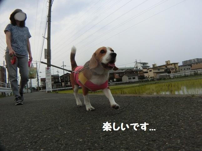笑うTARO4