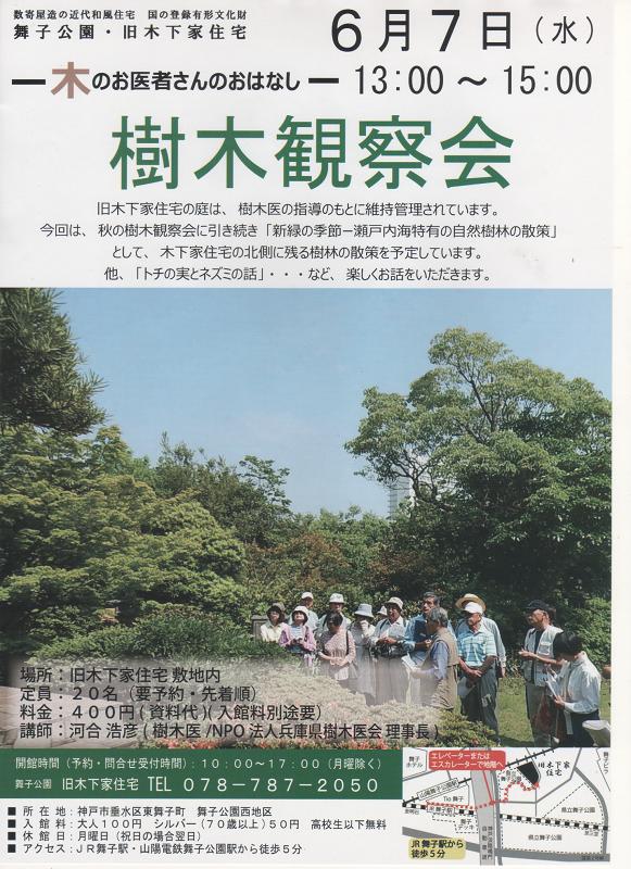 170607 樹木観察会