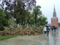 なぎ倒されたクレムリンの木々
