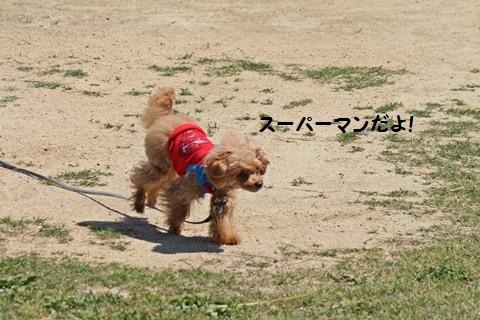 IMG_7591.jpg