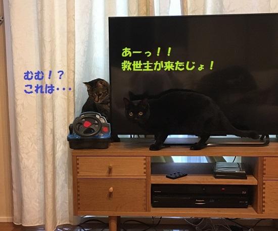 2017年6月9日③