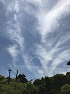 写真 2017-06-17 12 05 52 (1)