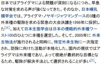 wikiアライグマ