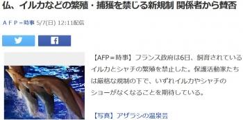 news仏、イルカなどの繁殖・捕獲を禁じる新規制 関係者から賛否