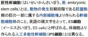 wiki胚性幹細胞