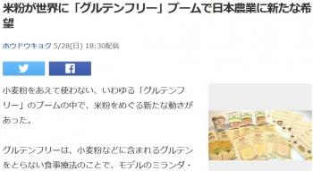 news米粉が世界に「グルテンフリー」ブームで日本農業に新たな希望