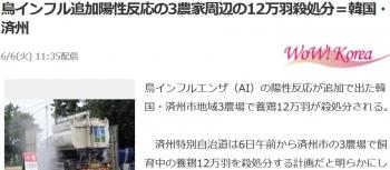 news鳥インフル追加陽性反応の3農家周辺の12万羽殺処分=韓国・済州