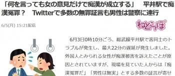 news「何を言っても女の意見だけで痴漢が成立する」 平井駅で痴漢冤罪? Twitterで多数の無罪証言も男性は警察に連行