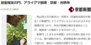 news皇室限定の門、アライグマ損壊 京都・光明寺