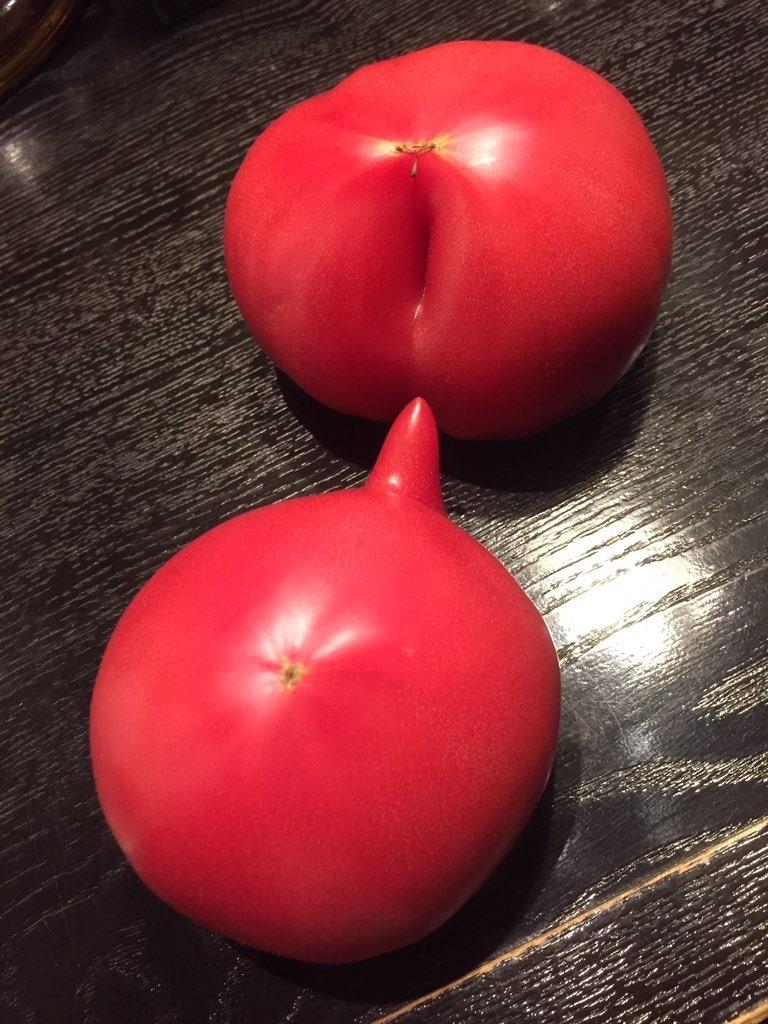 トマト割れ目チン3