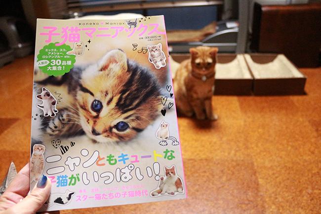 blog_000009981.jpg