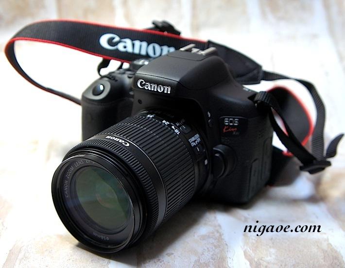 カメラ20170602