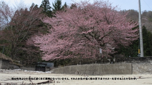 5_3青木湖カヌー (8) (520x293)