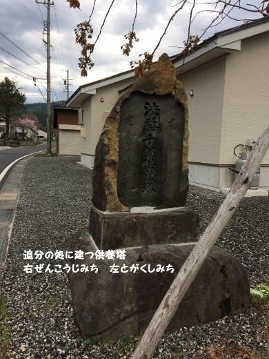5_6朝のウォーキング (5) (390x520)