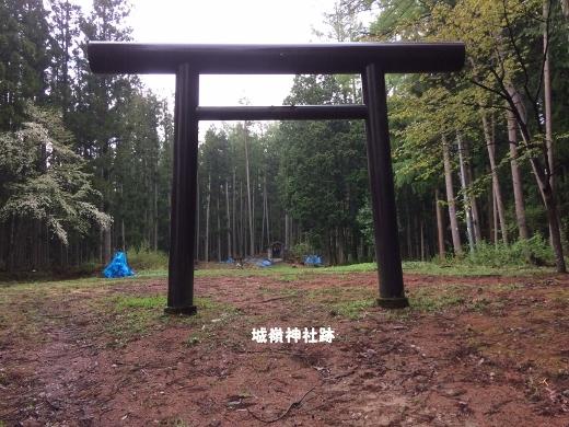 5_11早朝ウォーク (1) (520x390)