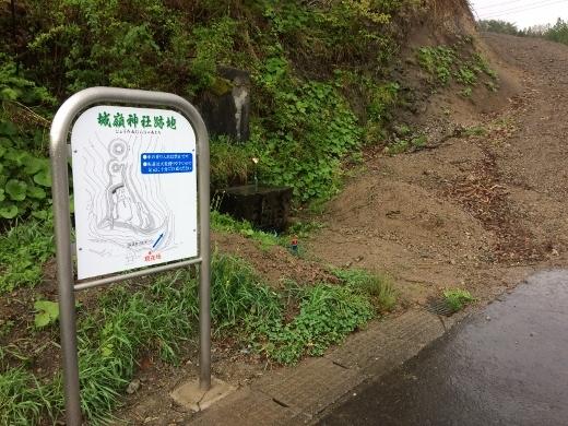 5_11早朝ウォーク (3) (520x390)